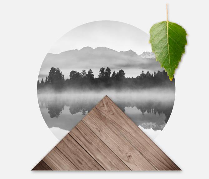 Wir verlegen den Wald zu Ihnen nach Hause